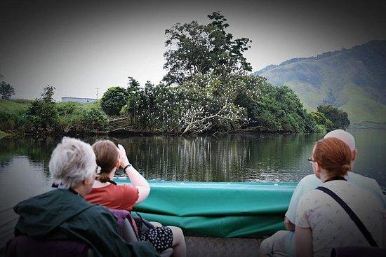 Daintree River Wildlife Cruise ...