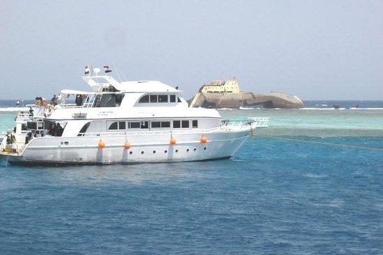 Tour di snorkeling nell'isola di Tiran