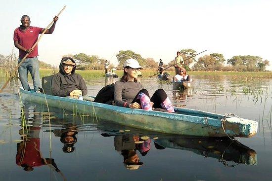 1 dag Okavango Delta Safari