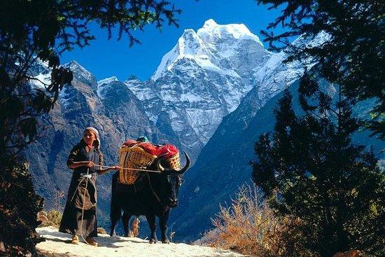 Trek da cultura do Everest