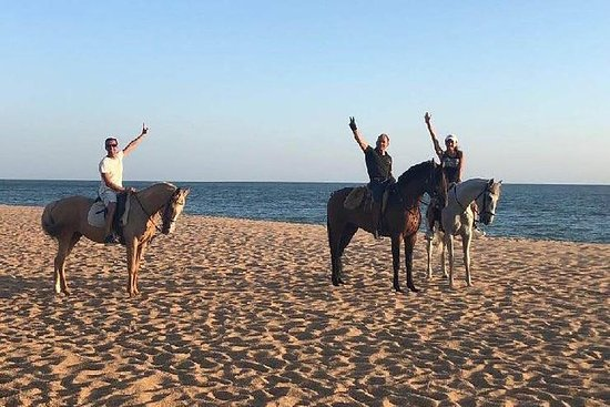 自行车之旅,骑马体验