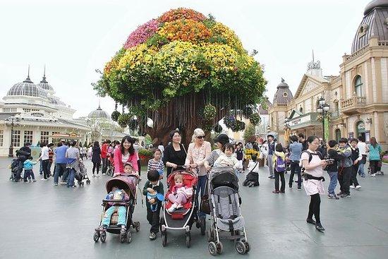 Everland Amusement Park