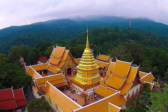 Tour de medio día de Wat Doi Suthep y...
