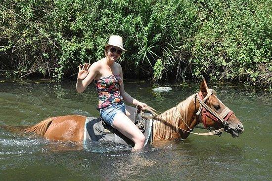 Icmeler Horse Safari