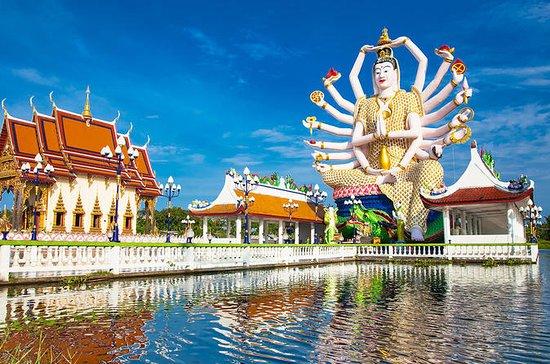 Koh Samui: recorrido turístico por la...