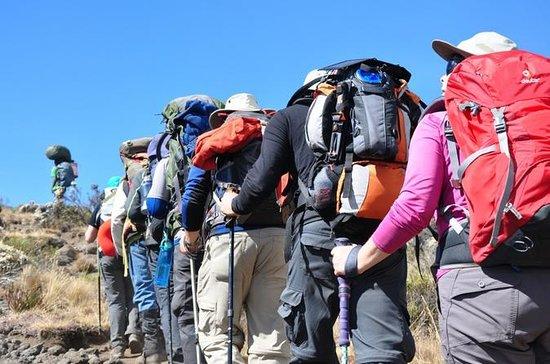 Excursão de 6 dias no Monte...