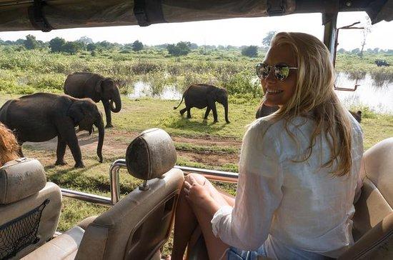 Parc national d'Udawalawe Aventure de...