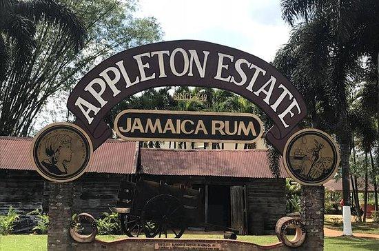Appleton Rum Factory YS Falls Black...