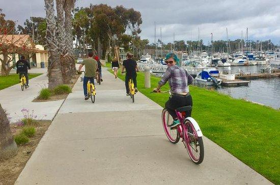 Beach Bike 'N Beers Afternoon Cruise