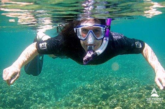 Tagesausflug am Roten Meer in Stella Di...