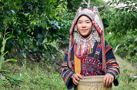 Wat Doi Suthep&White Meo(Hmong)Hilltribe