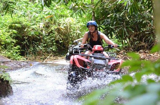 ATV QUAD Bike Ride at Taro Bali...