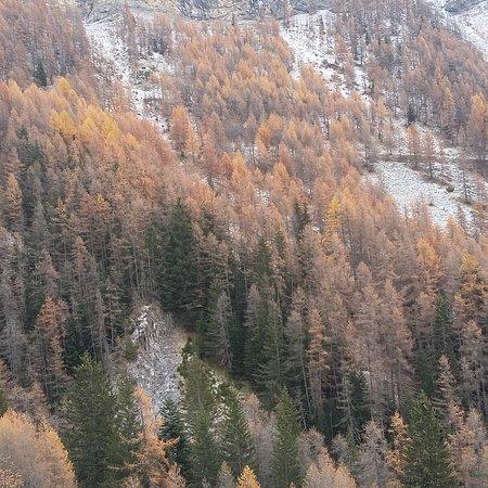 Saint Andre Les Alpes-bild