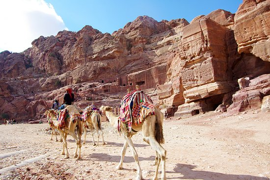 My Odyssey Tours-Petra One-day Tour