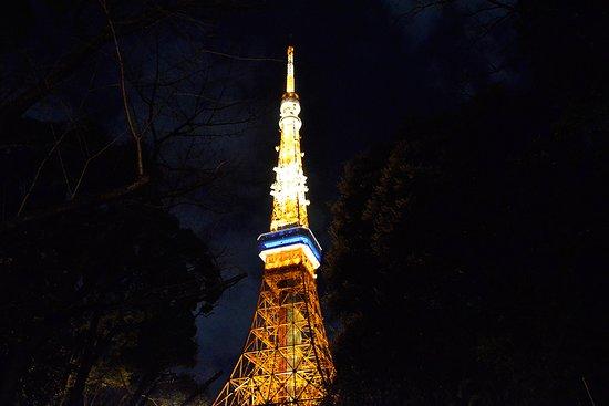 Odyssey Tours Tokyo One-day Tour