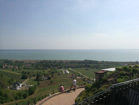 Lake Balaton with vineyards of Badacsony