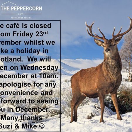 Perranuthnoe, UK: Please note the café will be closed from Friday 23rd November whilst we take a holiday. We will reopen on Wednesday 5th November and look forward to seeing you then. Thanks Suzi & Mike 😊
