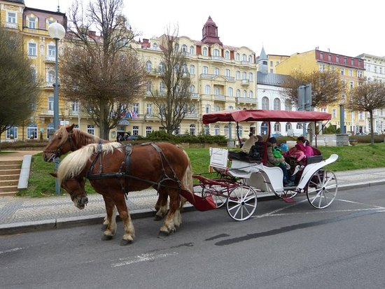 Marianske Lazne, Czech Republic: Horse Carriage