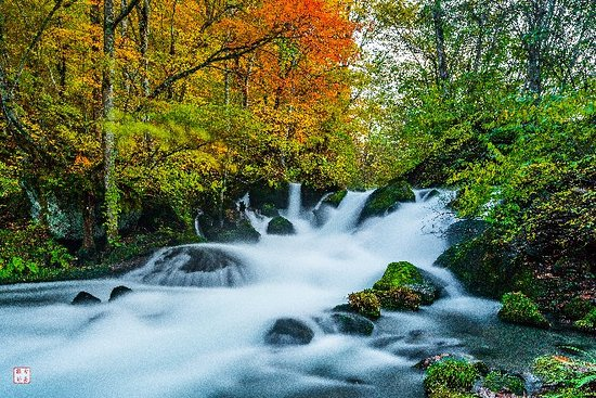 The Autumn stream of Autumn Streams