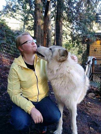 Wolf kisses!