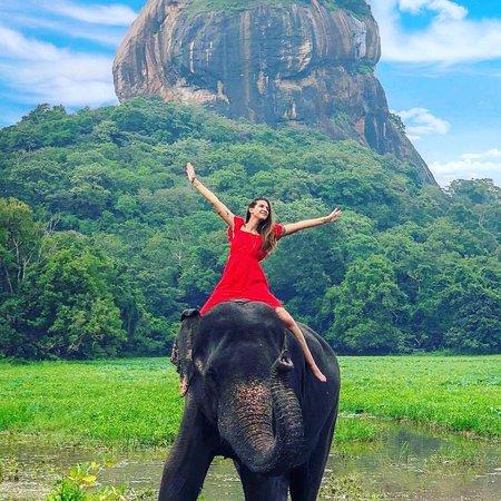 Picture tells it all!! #seelanka #srilanka #seelankatours #seelankatravels