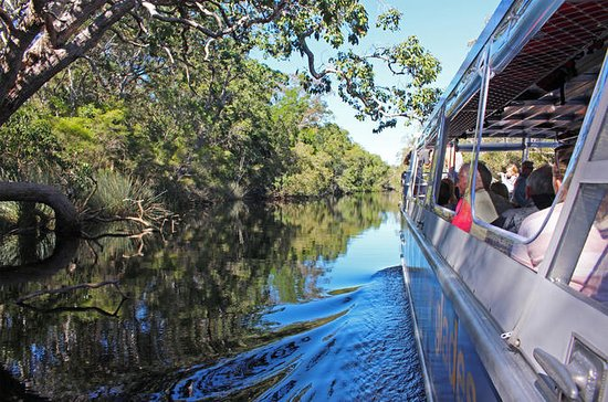 Croisière Sérénité Noosa Everglades