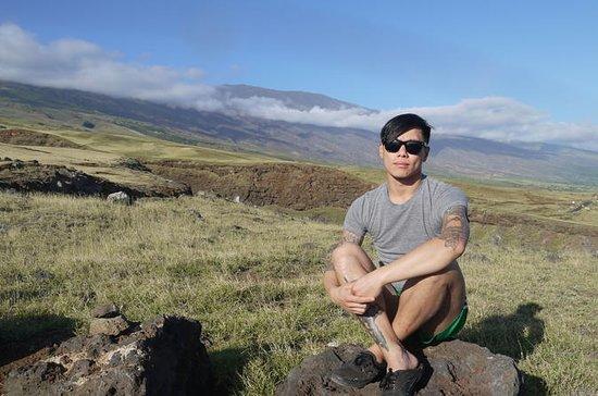 Ultimate Hana Full-Day Adventure Tour: Hana Full-Day Waterfalls and Rainforest Hike