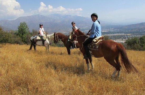 Paseo por la montaña a caballo desde...