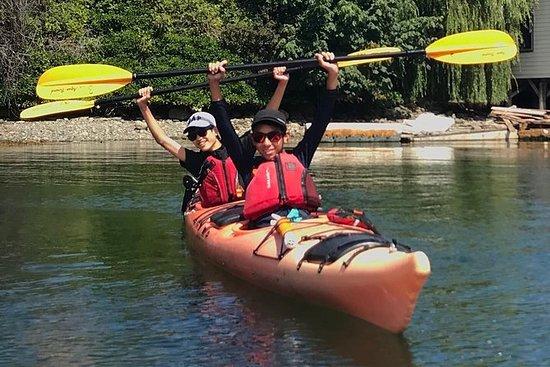 Visite du kayak de Victoria et des...