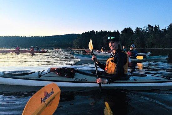 Excursion en kayak à Brentwood Bay et...
