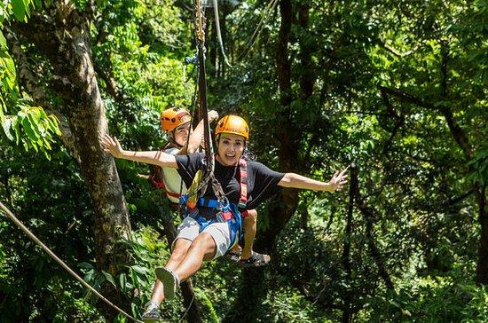 Forêt Tropicale et Récif: Cape...