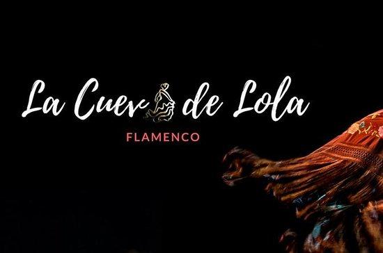 Entreebewijs flamencoshow La Cueva de ...