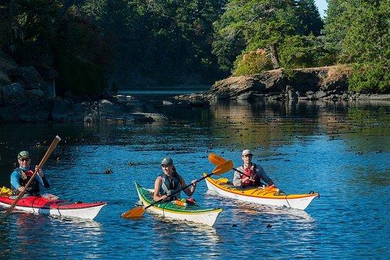 2-Hour Swartz Bay Kayak Tour and...