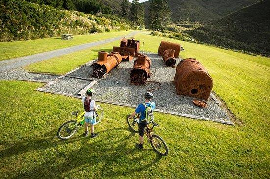 Remutaka Rail Trail Explorer Cycle...