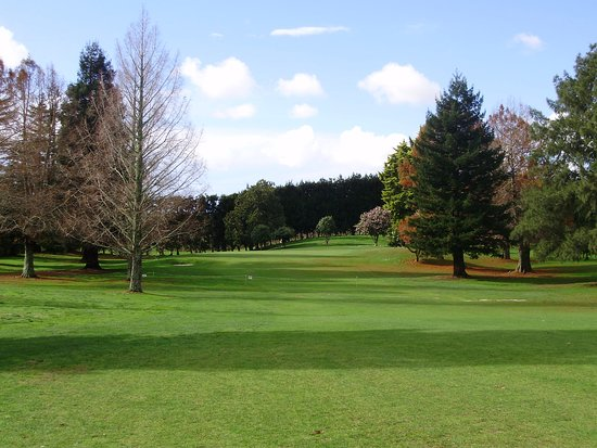 Te Puke Golf - 5th Fairway