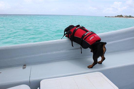 JPF Boating