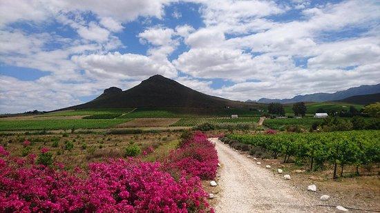 Robertson, Südafrika: Fraai Uitzicht