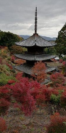 Joraku-ji Temple 3 Storey Tower