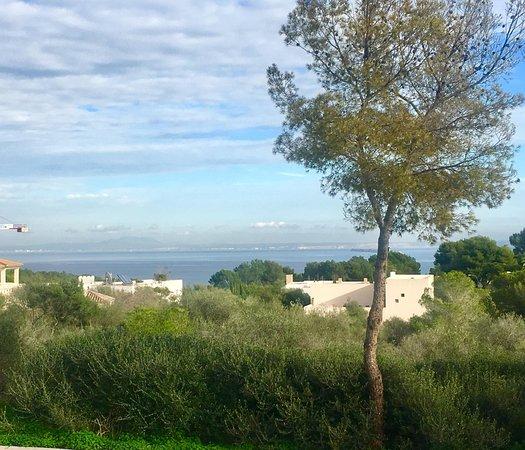 Sol de Mallorca, Spanyol: Amazing sea views towards Randa mountain, over the the entire Bay of Palma