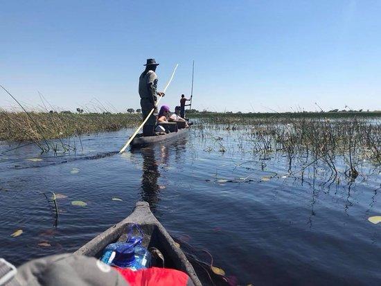 Okavango Delta: In the Mokoro