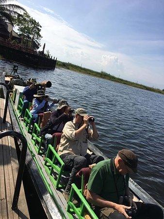 Yangon Region, Burma: Bird Watching trip on Inle lake