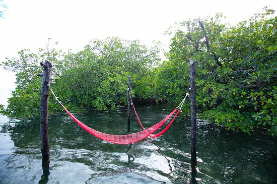 写真Urraca Private Island Eco-Lodge枚