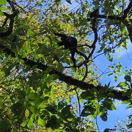 Boquete Outdoor Adventures صورة فوتوغرافية
