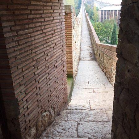 Passeig de la Muralla Photo