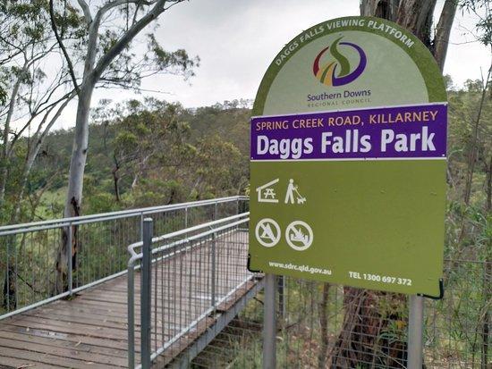 Bilde fra Dagg Falls Lookout