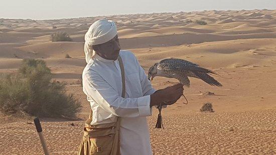 Small-Group Tour: Falcon 2—Dubai Falconry Safari: Our Guide Rahim and a Gyre falcon hybrid!