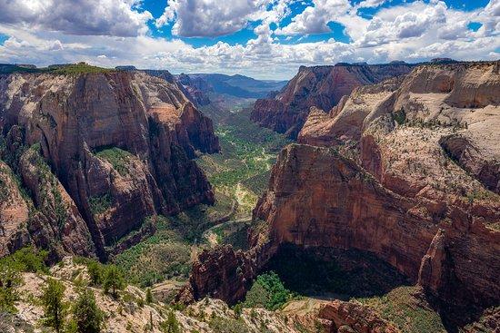 Der Observation Point im Zion Nationalpark (USA) bietet für mich den wohl schönsten Blick über den Zion Canyon. Zwar war der Besuch zum Mittag nicht der ideale Zeitpunkt zum fotografieren, die Aussicht war aber dennoch beeindruckend.
