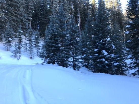A.A. Taos Ski Valley Wilderness Adventures Photo