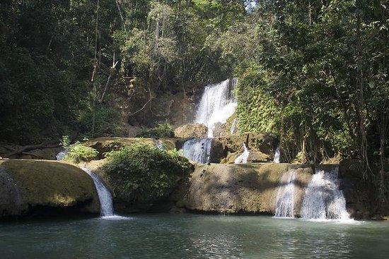 Black River Safari, YS Falls and...