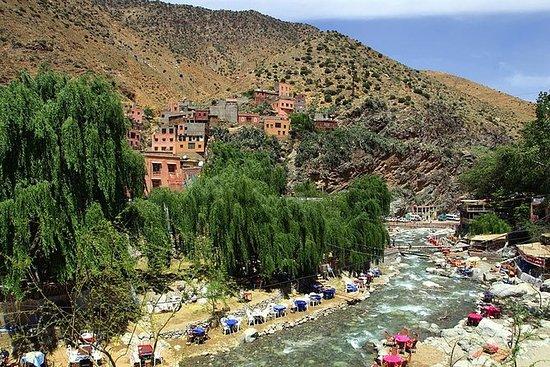 Berber Trails 4WD guidet dagstur fra...